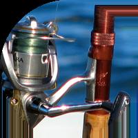 Fishing Reels
