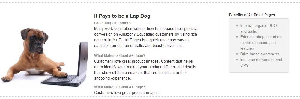 A+ content Amazon