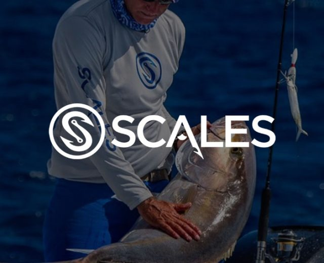 Scales Gear
