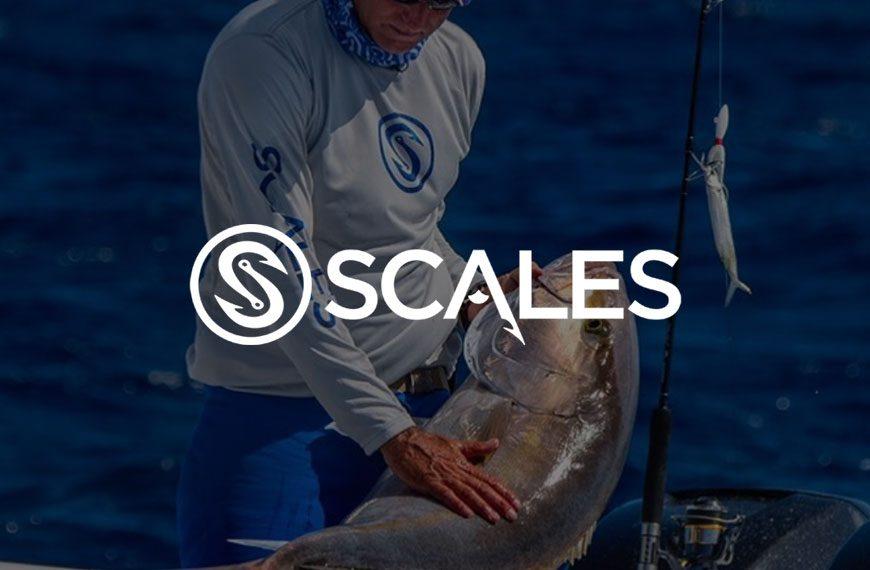 Scales Gear